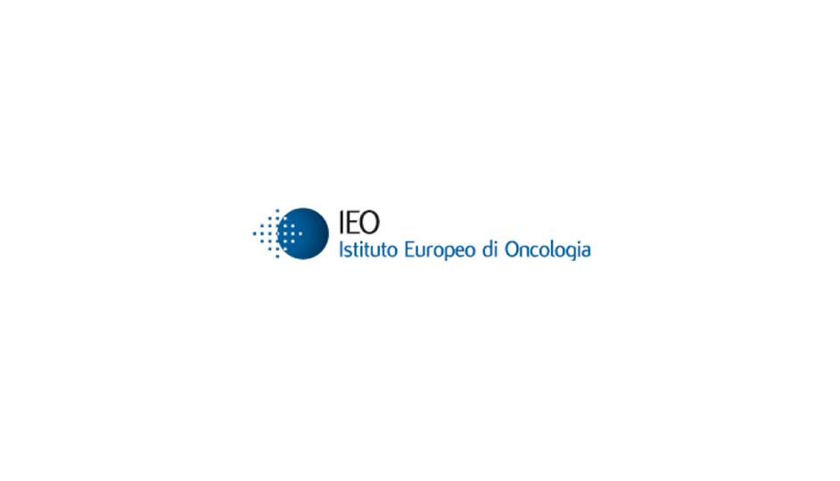 IEO: recursos geométricos simples, pero que significan con eficiencia.