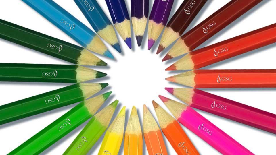 Uso del color en las marcas individuales de las Unidades Funcionales del GSG.