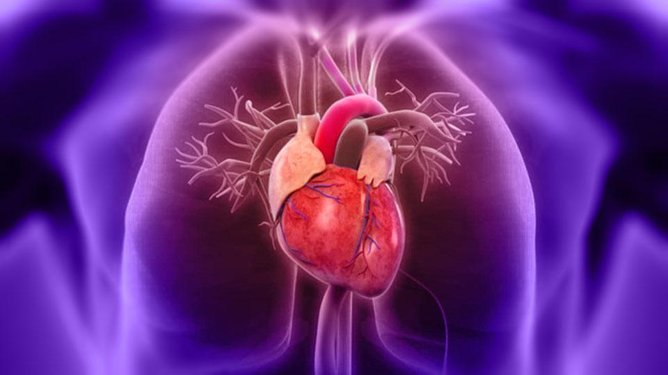 Importancia del Test de Esfuerzo Cardiopulmonar (TEC)